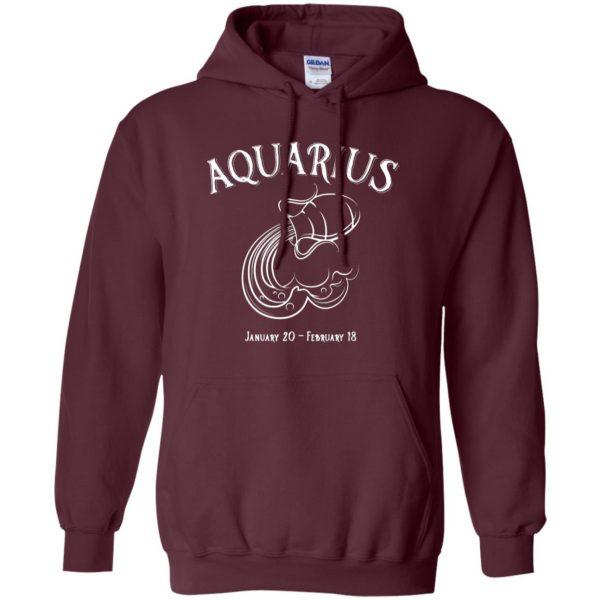 aquarius sweatshirt hoodie - maroon